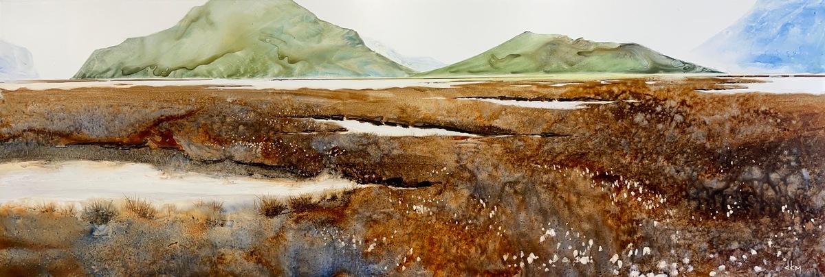small marshland